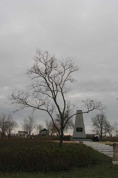 Вид с деревом